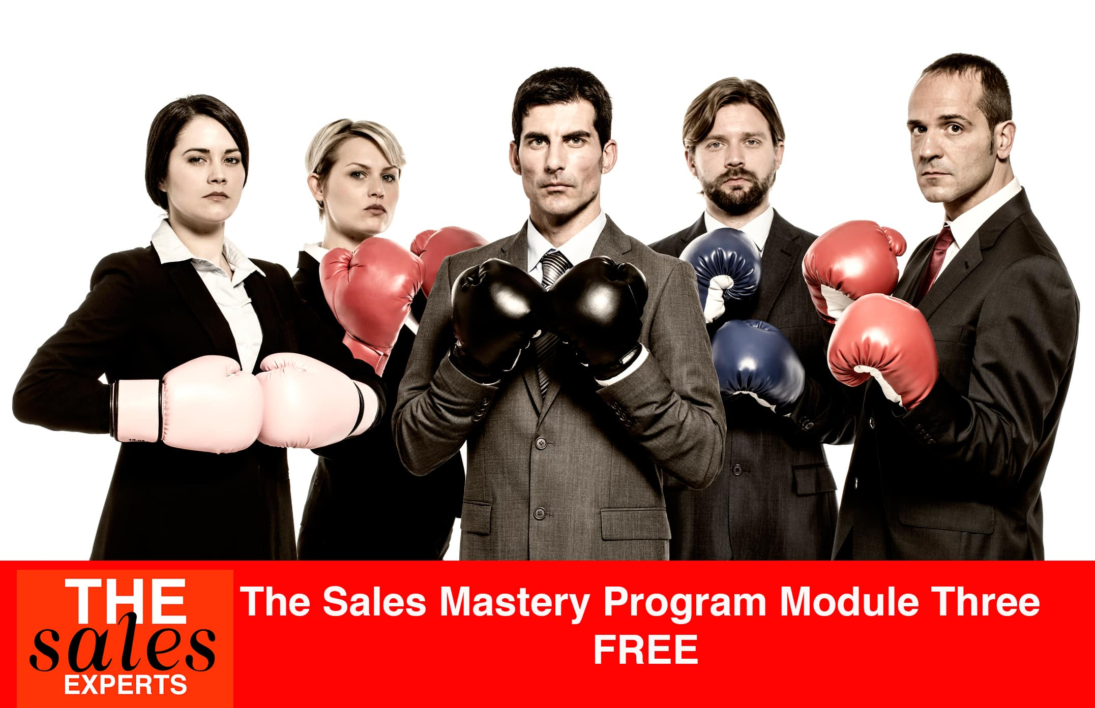 The Rainmaker Sales Mastery Program – Module Three FREE!